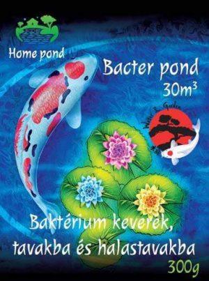 Home pond Bacter pond baktérium kultúra